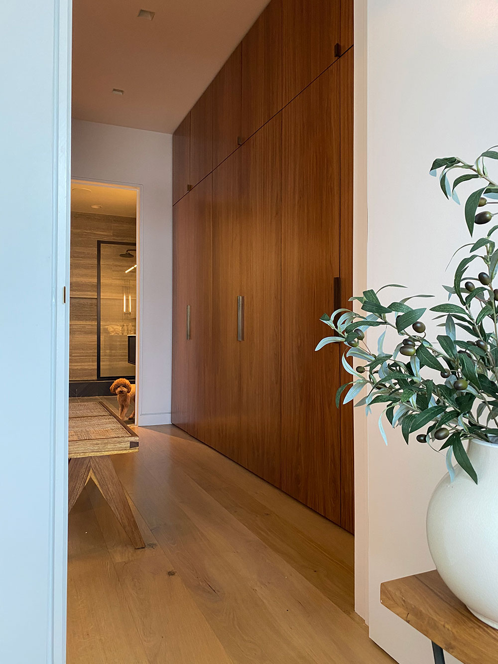 Walking closet of the Loft renovation project in Chelsea, New York City designed by the architecture studio Danny Forster & Architecture